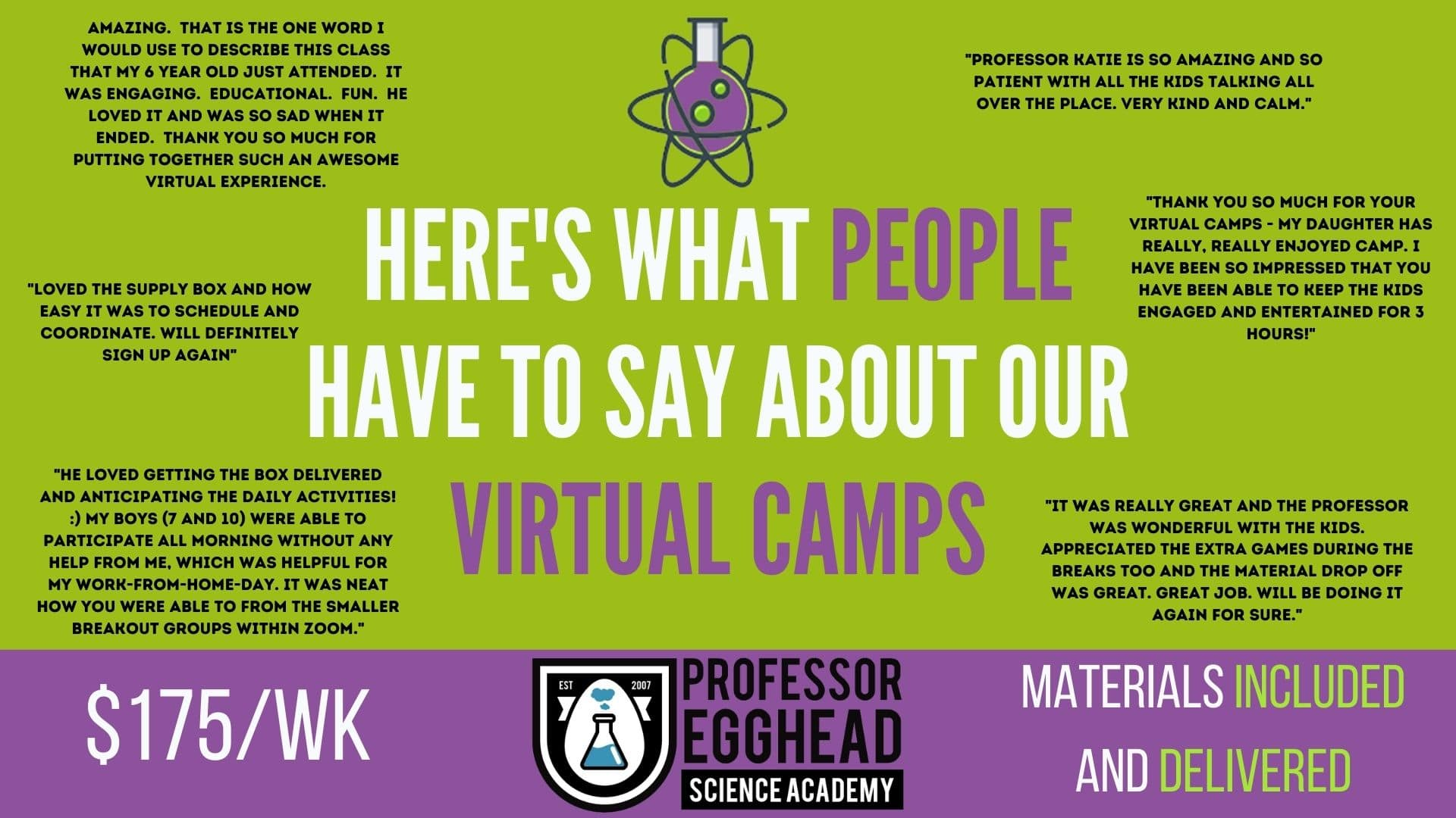 Professor Egghead Virtual Camp Reviews